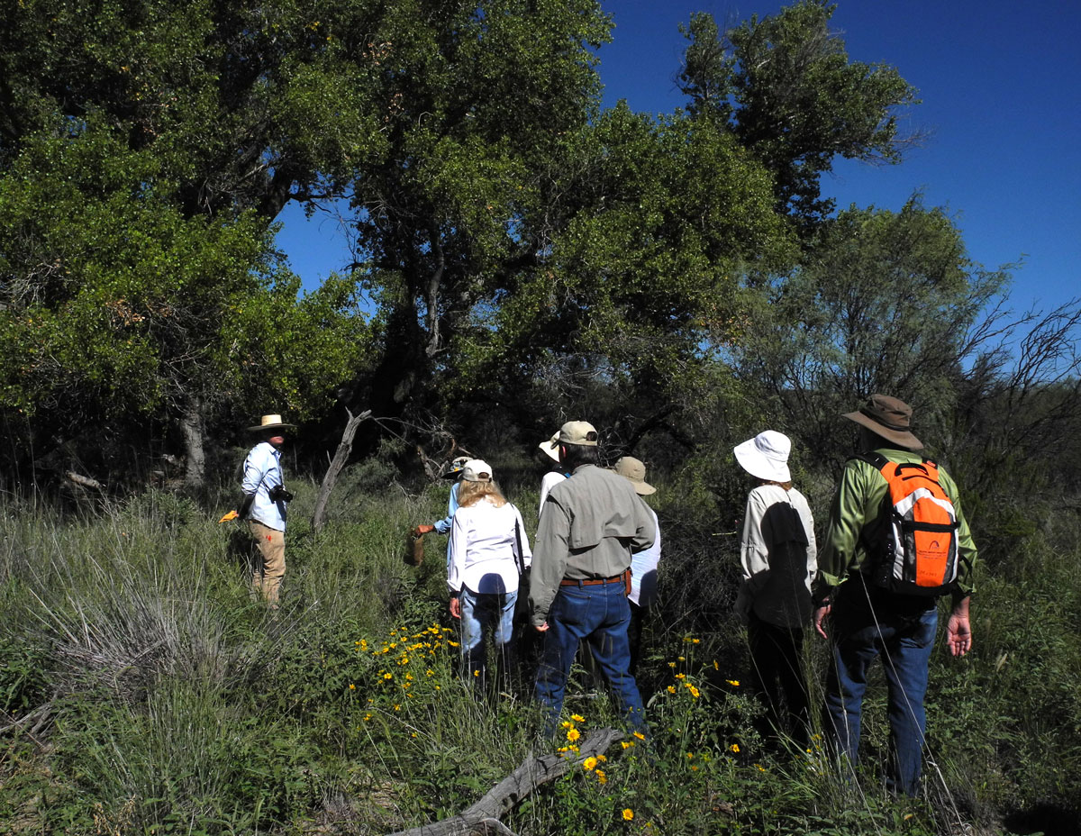 NPSOT at Alamito Creek Preserve