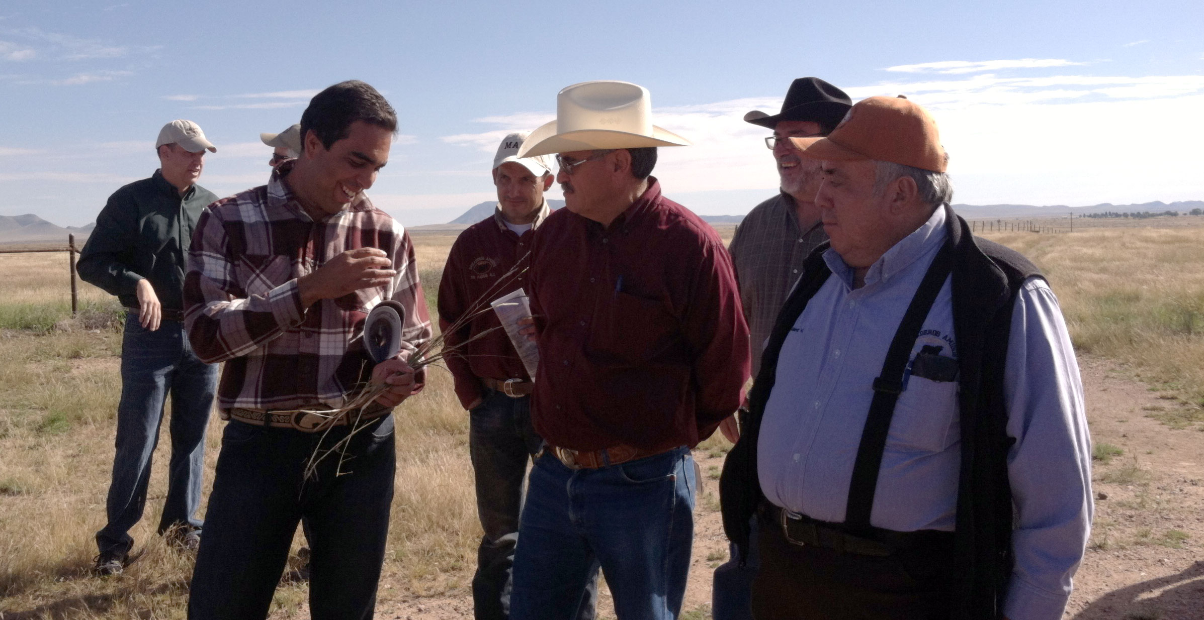 TSSRM guests from Mexico compare grasses.