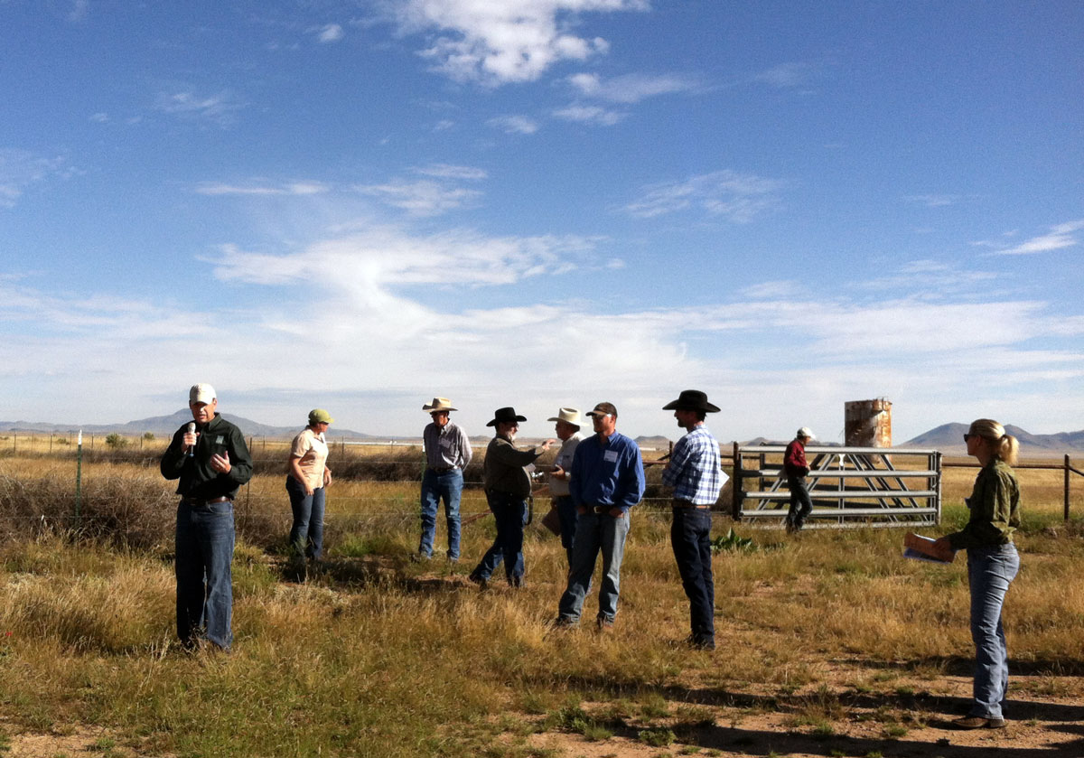 TPWD pronghorn expert Shawn Gray talks about the status of pronghorn restoration on the Marfa plateau.