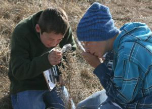 Marfa International School students Amos and Felix learned to identify grasses and other native plants during an outdoor education program at the Dixon Water Foundation's Mimms Unit last week. Students from kindergarten through eighth grade learned about desert grasslands and sustainable land management through science projects and presentations by local experts.