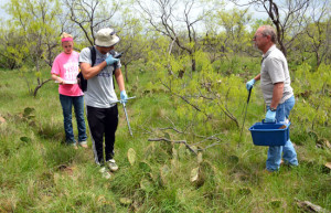 Karissa Olson, Isaiah Longoria, and Michael Flud collecting soil samples from the wildlife pasture at Newman Ranch. (Photo by Marla Potess)